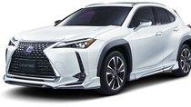 Lexus UX thay đổi diện mạo nhờ tích hợp bodykit của Modellista