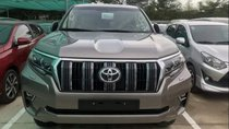 Cần bán gấp Toyota Prado 2019, màu bạc, nhập khẩu nguyên chiếc