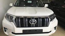 Bán Toyota Land Cruise Prado VX 2019, màu trắng, xe và giấy tờ giao ngay, LH 0906223838
