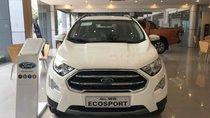 Cần bán xe Ford EcoSport 2019, 250 triệu