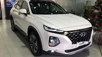Cần bán Hyundai Santa Fe năm 2019, giao xe trước tết với đủ phiên bản và màu