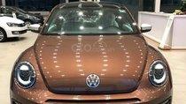 Bán xe Volkswagen Beetle sản xuất 2018, màu nâu nhập từ Âu