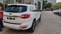 Cần bán lại xe Ford Everest Titanium sản xuất năm 2018, màu trắng, nhập khẩu