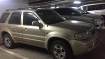 Cần bán gấp Ford Escape AT 2.3L 2004, màu vàng, nhập khẩu nguyên chiếc