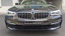 Cần bán xe BMW 5 Series 520i sản xuất 2019, nhập khẩu