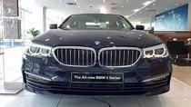 Bán ô tô BMW 5 Series 520i năm 2019, màu xanh lam, nhập khẩu