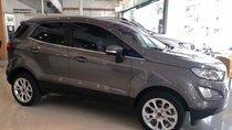 Bán Ford EcoSport 1.5 Titanium 2019, màu xám, nhập khẩu