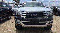 Cần bán Ford Everest đời 2019, xe nhập khẩu
