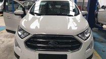 Bán Ford Ecosport giá chỉ từ 530 triệu + gói KM phụ kiện hấp dẫn, Mr Nam 0934224438 - 0963468416