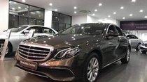 Cần bán xe Mercedes E200 đời 2018, màu nâu