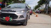 Cần bán lại xe Ford EcoSport đời 2016, màu xám, chính chủ