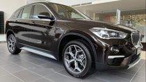 Cần bán BMW X1 sDrive 1.8i sản xuất 2019, màu đen, nhập khẩu