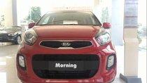 Bán xe Kia Morning sản xuất 2019, màu đỏ, xe nhập