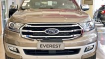 Bán Ford Everest đời 2019, màu vàng, xe nhập