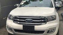 Cần bán xe Ford Everest 2019, màu trắng, xe nhập
