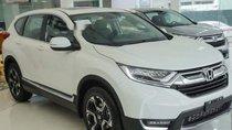 Bán Honda CR V năm 2019, màu trắng, xe có sẵn đủ màu giao xe trong 1 nốt nhạc