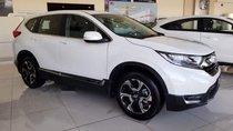 Cần bán Honda CR V sản xuất năm 2019, màu trắng, nhập khẩu