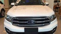 Cần bán xe Ford Everest đời 2019, màu trắng, nhập khẩu nguyên chiếc giá cạnh tranh