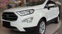 Cần bán Ford EcoSport đời 2019, màu trắng giá cạnh tranh
