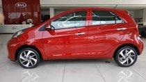 Bán ô tô Kia Morning sản xuất 2019, màu đỏ, giá 352tr