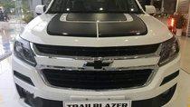 Bán ô tô Chevrolet Trailblazer đời 2018, màu trắng, nhập khẩu