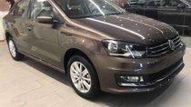 Cần bán xe Volkswagen Polo 2019, màu nâu, nhập khẩu