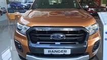 Bán ô tô Ford Ranger Wildtrak 2.0L 4x4 AT sản xuất 2019, màu nâu, xe nhập