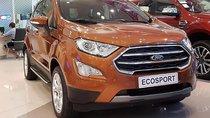 Cần bán Ford EcoSport Titanium đời 2019