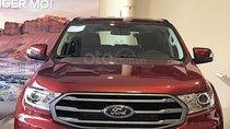 Bán Ford Everest đời 2019, màu đỏ, xe nhập