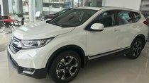 Honda Ô tô Bắc Ninh chuyên cung cấp dòng xe Honda CRV, xe giao ngay hỗ trợ tối đa cho khách hàng- Lh 0983.458.858