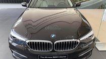 Cần bán xe BMW 5 Series 520i đời 2019, màu đen, nhập khẩu