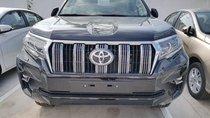 Toyota Tân Cảng bán Toyota Land Cruiser Prado nhập khẩu tại Nhật - mới 100% - đủ màu giao xe ngay - LH: 0901923399