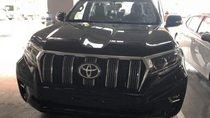 Bán xe Toyota Prado 2.7L 2019, màu đen, nhập khẩu