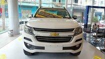 Cần bán Chevrolet Trailblazer MT đời 2019, màu trắng, nhập khẩu