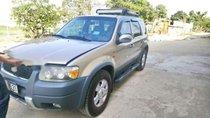 Bán Ford Escape đời 2003, màu vàng, nhập khẩu, 225 triệu