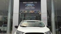 Chỉ với hơn 500tr sở hữu ngay chiến binh đường phố Ford Ecosport 2019. Hỗ trợ trả góp cao. LH 0974286009