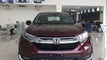 Cần bán xe Honda CR V 1.5G sản xuất 2018, màu đỏ, xe nhập