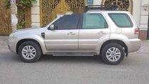 Cần bán lại xe Ford Escape đời 2009, màu bạc còn mới, 345 triệu