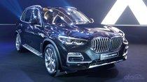 BMW X5 2019 hoàn toàn mới chào giá từ 2,6 tỷ đồng