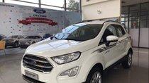 Bán Ford EcoSport sản xuất năm 2019, màu trắng