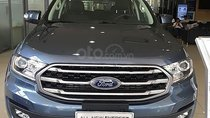 Bán Ford Everest Ambiente năm 2019, màu xanh lam, nhập khẩu nguyên chiếc giá cạnh tranh
