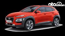 Bán Hyundai Kona bản 2.0 đặc biệt