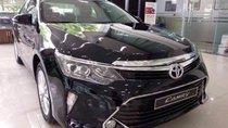 Bán xe Toyota Camry 2.5Q đời 2019, màu đen