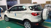 Bán Ford EcoSport Titanium 1.0 đời 2019, màu trắng