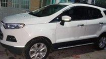 Bán Ford EcoSport năm 2015, màu trắng, xe nhập