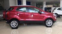 Cần bán Ford EcoSport năm 2019, 689 triệu