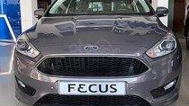 Bán xe Ford Focus Sport 1.5L năm 2019, màu xám