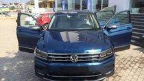 Cần bán Volkswagen Tiguan năm sản xuất 2018, xe nhập Đức