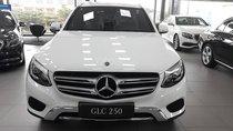 Cần bán xe Mercedes GLC 250 4Matic 2019 - Giá tốt nhất thị trường - Hotline: 0931548866