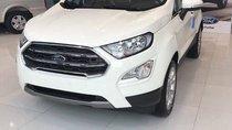 Bán Ford EcoSport Ambiente 1.5 MT đời 2019, màu trắng giá cạnh tranh - LH: 0827707007